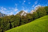 Scenic nature landscape in Bavaria, Germany