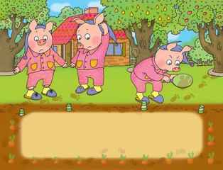 three little pigs discover the loss of cabbage from the garden