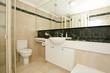 stylish modern bathoom