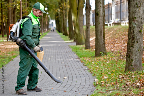 Landscaper removing dead leaves using Leaf Blower