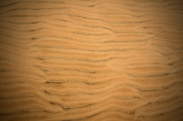 Abstract dune sand background