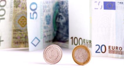 Euro & Polish currency