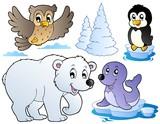 Fototapety Various happy winter animals