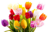 Fototapety Bouquet of colorful tulips