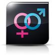Symbole glossy vectoriel homme et femme