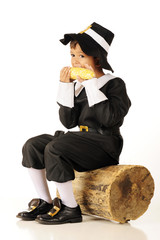 Corn-Eating Pilgrim