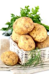 Basket of fresh organic potatoes