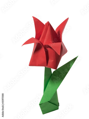 Origami red tulip isolated on white