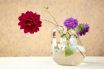 Asters and  peony in  glass jug