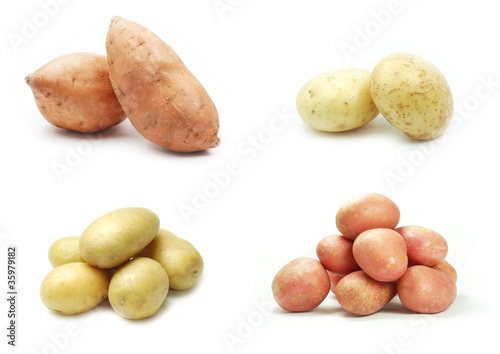 Four varieties of potatoes on white background