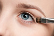 Cosmetic paint brush - close-up portrait of eye shadow zone