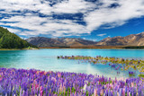 Fototapety Lake Tekapo, New Zealand