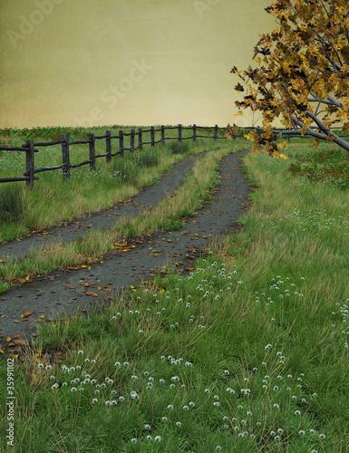 Viottolo di campagna in autunno