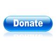 Boton alargado brillante texto Donate