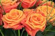 Blumenstrauß mit Rosen zum Valentinstag