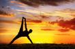 Yoga silhouette Vasisthasana plank pose