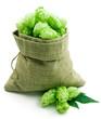 Hop in a burlap bag