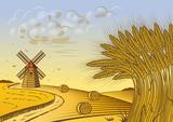 Fototapety Wheat fields landscape