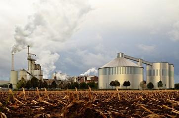 Zuckerfabrik Kuchenheim