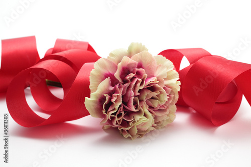 Yellow purple carnation and red bow