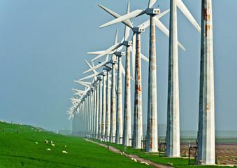 Windmills along a dam, Holland