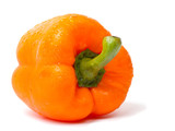 Single orange pepper on white background