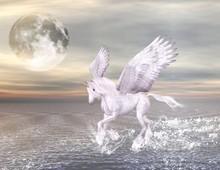 Bellissimo cavallo alato che corre nel mare
