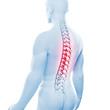 Männlicher Rücken mit Wirbelsäule