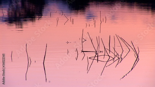 surface of the water at sunset