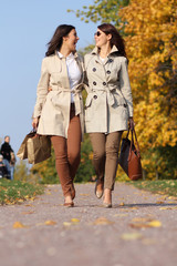Two cheerful girls twins, in the autumn park