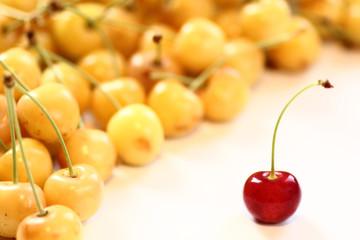 Gelbe Kirschen mit einer roten Kirsche