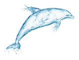 dolphin made out of water splashes