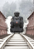 steam locomotive, Cierny Balog, Slovakia