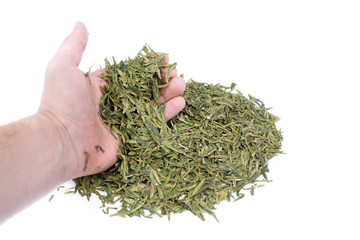 Green Tea In Hand