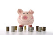 piggy banks standing on coins