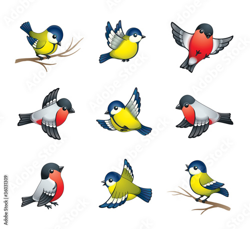 Fotobehang Vogels, bijen Winter Birds Illustration