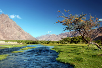 Landscape with river in mountains. Himalayas