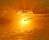 Fototapeta pejzaż - natura - Zachód / Wschód Słońca