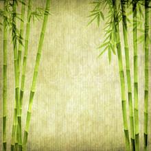 conception des bambous chinois avec la texture du papier à la main