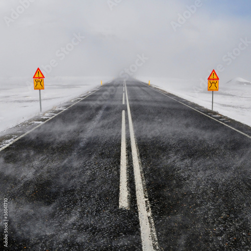 Road in a snow blizzard, Iceland