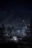 Fototapety Weihnachtswald