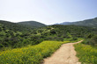 Hiking trail in Upper Galilee, Israel.