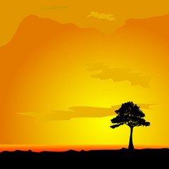 tree on desert vector illustration