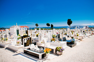 Cemetary and Graves under a blue Sky
