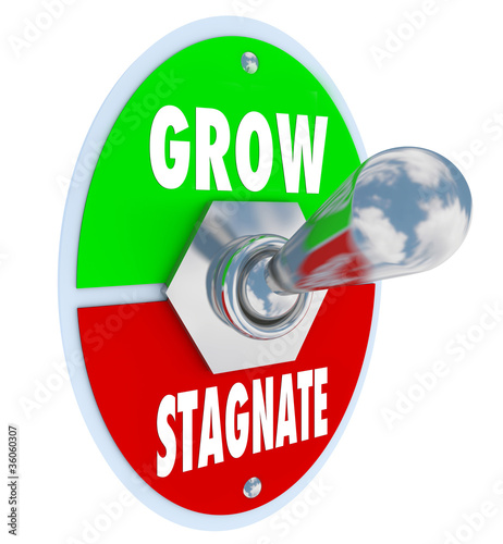 Grow Vs Stagnate - Switch to Change or Innovate and Succeed