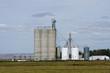 Grain storage silos and elevators