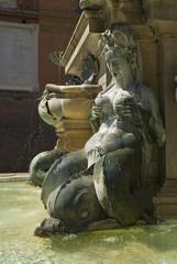 Particolare della Fontana del Nettuno, Bologna