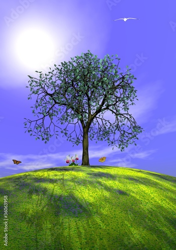 Summer tree and nature