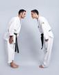 Karate vs Taekwondo, Verbeugung