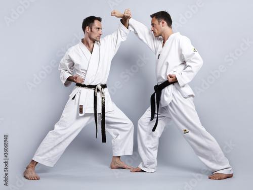 Karate vs Taekwondo, Partnertraining 04